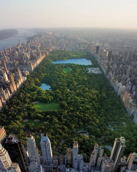 海瑞温斯顿Central Park Mosaic耳环及戒指