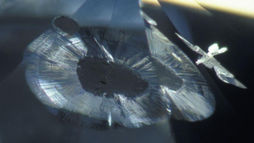 仿若飞鸟的天然钻石内含物